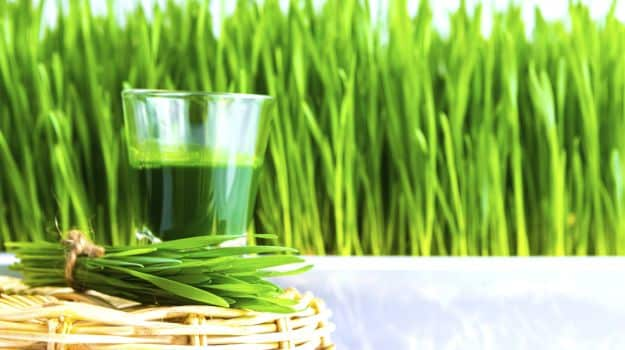4-wheatgrass-625_625x350_81444376743